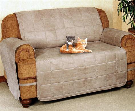 Protect Sofa From Cat Smileydotus
