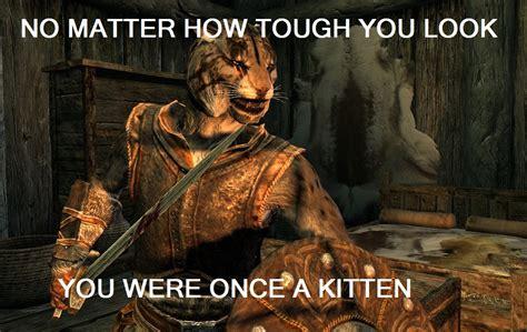Skyrim Memes - no matter tough you look you were once a kitten skyrim khajiit kitten funny pictures