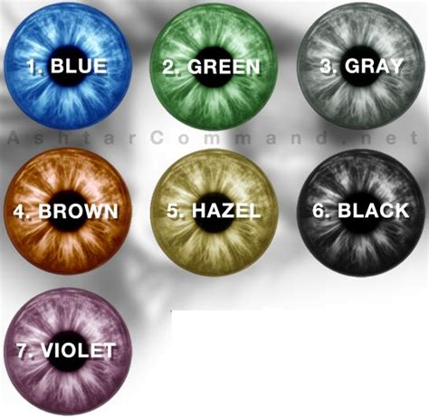 human eye color chart meer dan 1000 idee 235 n oogkleur grafieken op