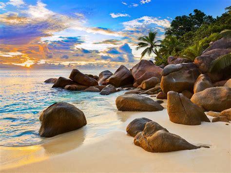 tropical beach  sunset nature background wallpaperscom
