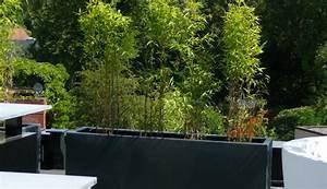 Bac Rectangulaire Pour Bambou : exemples de r alisations en bambous pour ext rieur ~ Nature-et-papiers.com Idées de Décoration