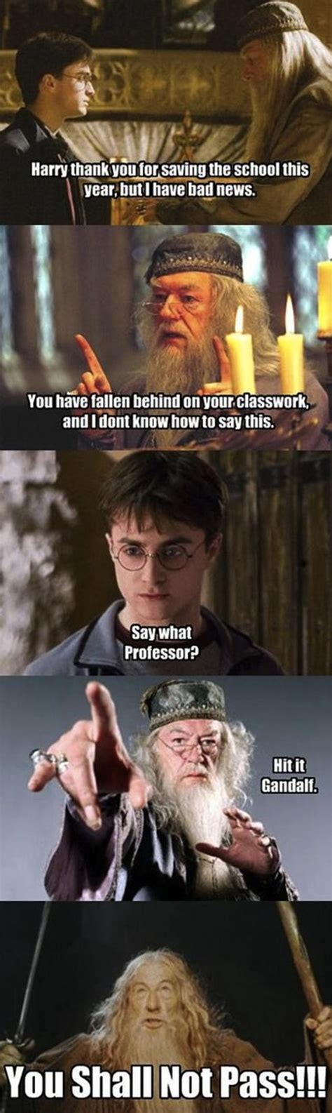 Harry Potter Funny Memes - the best of gandalf s you shall not pass memes 14 pics