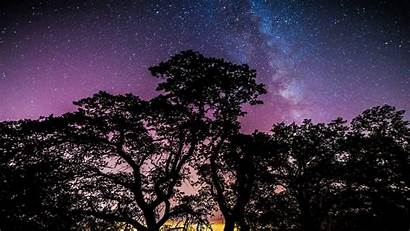 Galaxy Stars Trees Desktop Wallpapers Backgrounds Screen