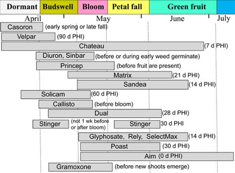 blueberry weed control late spring  summer options