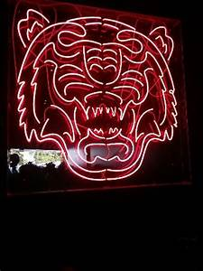 Tiger Neon sign Picture of Thaiger Temple Terrigal