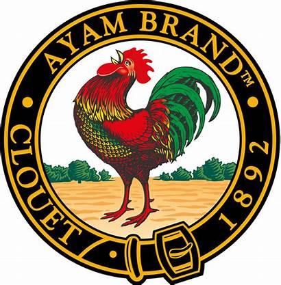 Ayam Wikipedia Pertubuhan Johor Makanan France Kebajikan