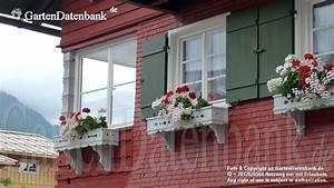 Bilder Schöne Häuser : sch ne h user bilder 11 fotos ~ Lizthompson.info Haus und Dekorationen