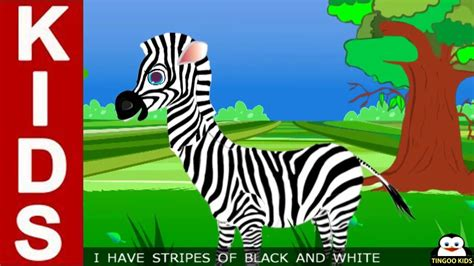 zebra outline  stripes  coloring pages