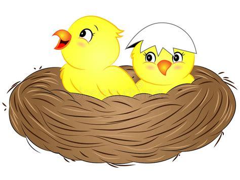 Cartoon Yellow Baby Birds In Nest Stock Vector