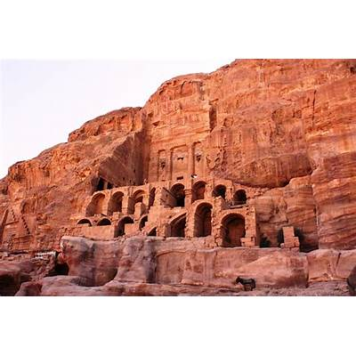 Petra — Lost City of StoneFly Icarus Fly