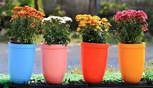 Flower, Pot, Part, 2, U2013, Weneedfun
