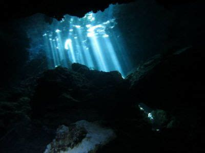 cavern diving excursion  dressel divers