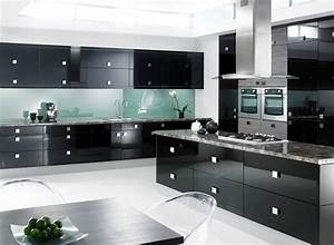 Modern black kitchen cabinets modern kitchen designs for Modern kitchen cabinets black