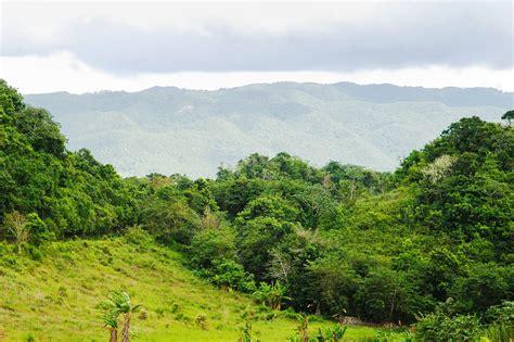 Blue Mountains, Jamaika   Franks Travelbox