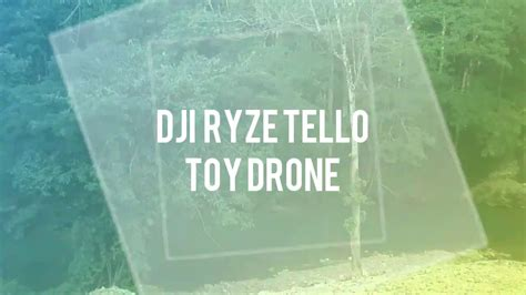 Maybe you would like to learn more about one of these? Dji Ryze Tello sample footage (second attempt) - YouTube