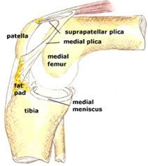 Plica Syndrome   Sports Podiatry