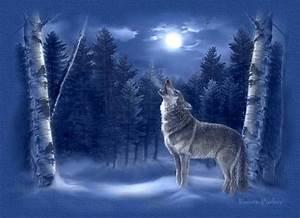 Wonderful World of Wolves