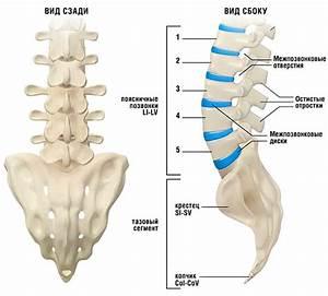 Как избавится от звона в ушах при шейном остеохондрозе
