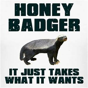 [Image - 140324] | Honey Badger | Know Your Meme