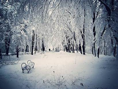 Snowy Scene Wallpapers Snow Scenes