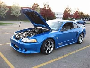 frederick72705 1999 Saleen Mustang Specs, Photos, Modification Info at CarDomain