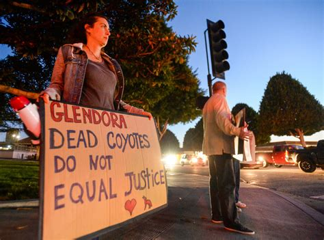 small group  activists protest glendora  catching