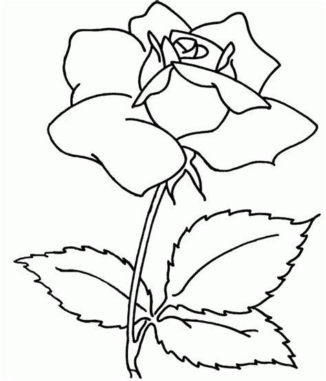 Adult Flower Coloring Pages Coloring Home