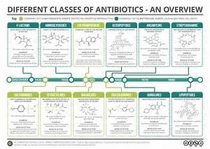 Classification Of Antibiotic