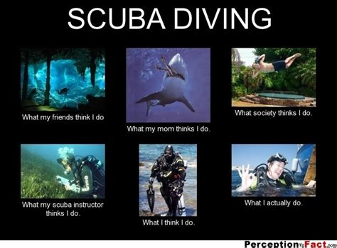 Scuba Diving Meme - 12 best images about funny scuba on pinterest cars scubas and the hard