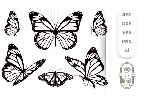 butterfly svg bundle  monarch butterfly svg cut files