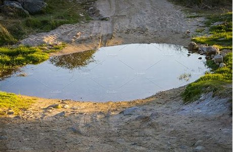 Image result for Puddle