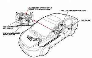 Honda Accord Evap Diagram : honda accord coupe questions i have a 1994 accord i ~ A.2002-acura-tl-radio.info Haus und Dekorationen