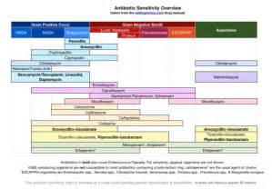 Antibiotic Sensitivities Chart