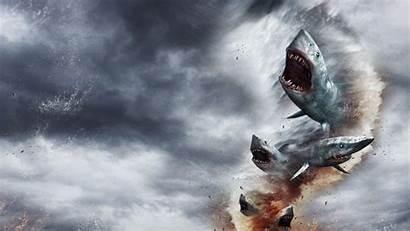 Sharknado Sharks Frozen Bomb Wallpapers Shark Tornado