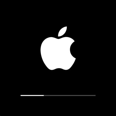 iphone 5s stuck on apple logo iphone 5s stuck on apple logo with loading bar 12 000