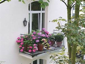 Bäume Für Den Balkon : das beste f r den balkon im schatten planungswelten ~ Frokenaadalensverden.com Haus und Dekorationen