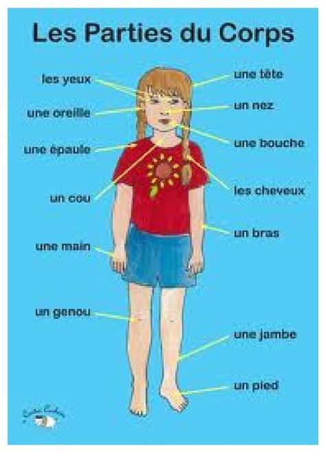 chambre des metiers 13 français pour mes élèves le corps humain i