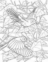 Simard sketch template