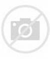 File:Map of Michigan highlighting Washtenaw County.svg ...