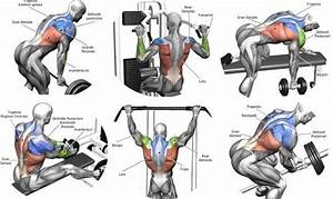 5 Back Workouts For Mass Bodybuilding Program