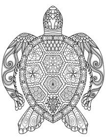 HD wallpapers sea animal coloring pages
