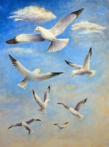 seagull painting resimler çizim islami sanat