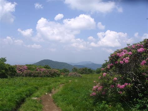 Craggy Gardens by Relaxed Hiking Nc Craggy Gardens Sler 6 11 2011