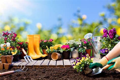 Blumen, Bäume, Beeteso Macht Ihr Balkon Und Garten Fit