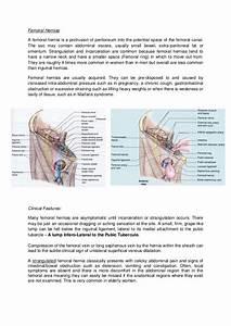 Hernia U0026 39 S And Groin Swellings