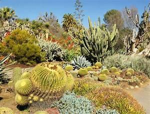comment creer un jardin mexicain femme actuelle With comment realiser un jardin