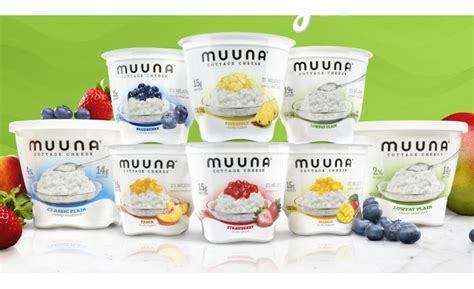 flavored cottage cheese muuna sees rapid growth with its innovative cottage cheese