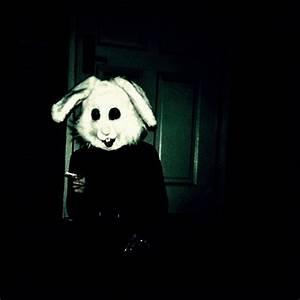 bad bunny on Tumblr