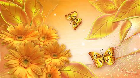 butterfly wallpaper  golden butterfly high
