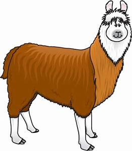 Alpaca Clipart - Cliparts.co